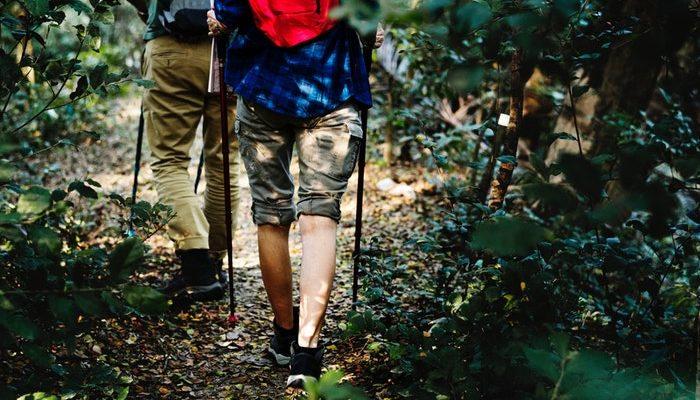 Best Hiking Boots Under 100